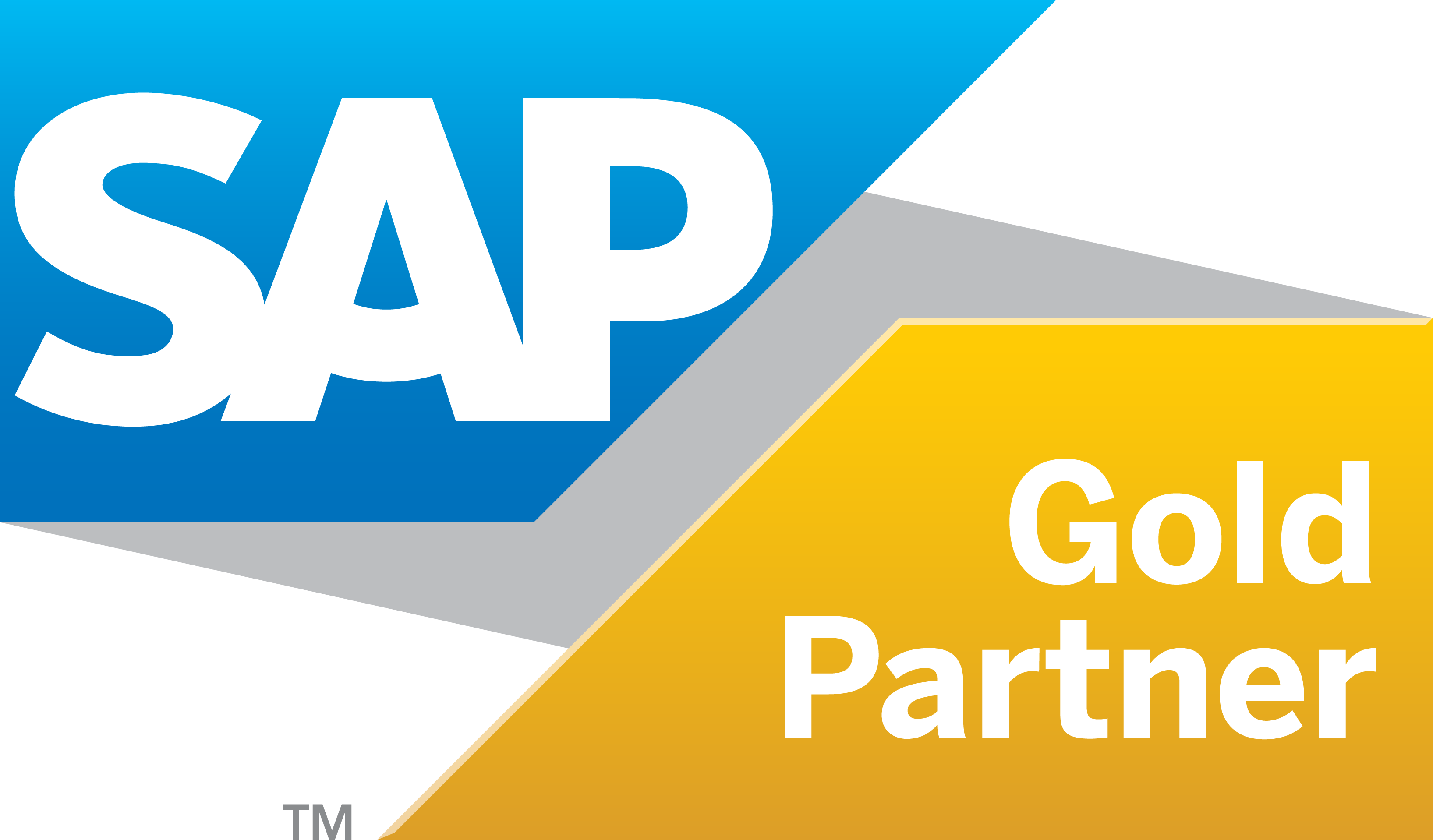 Sap Goldpartner Grad R (2)